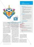 How to Work with the Extra: The Brave Thistles of Scotland - Die Legende der schottischen Nationalpflanze Preview 2