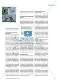 How to Work with the Extra: The Brave Thistles of Scotland - Die Legende der schottischen Nationalpflanze Preview 4
