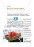 """Insekten entdecken - """"Kleine Tiere"""" im Kunstunterricht der Grundschule Preview 1"""