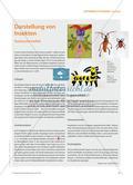Darstellung von Insekten - Technische Vielfalt Preview 1