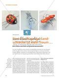 Eine Blauflügelige Sandschrecke ist mein Traum … - Zarte Wesen aus Draht und Verpackungsmaterialien Preview 1
