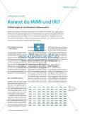 Kennst du MIMI und IRI? - Entdeckungen an verschiedenen Zahlenmustern Preview 1