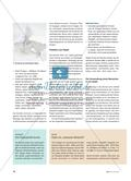 Die Verwandlung - Eine Plastik aus Papier Preview 3