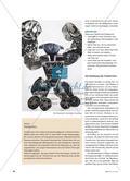 Transformers - Das Collage-Prinzip Preview 3