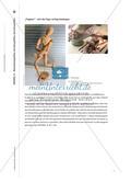 Wahrnehmungshilfen, Vorstellungshilfen, Darstellungshilfen Preview 11