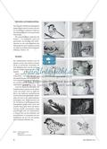 Rara avis in terris – ein seltener Vogel auf Erden: Eine Übungssequenz für die Klasse 8 Preview 2