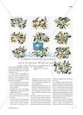 10 x 10 Reihen zu Gestaltungspraktiken - Etüden zur Anreicherung des bildnerischen Repertoires Preview 2
