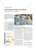 Herr Eichhorn und der erste Schnee - Abstrahierte Bildsprachen in Bilderbüchern Preview 1