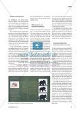 Tierdarstellungen - Abstrahierte Pinselzeichnungen Preview 2