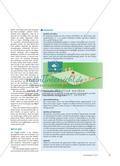Werfen wie die Wikinger - Das skandinavische Wurf- und Geschicklichkeitsspiel Kubb eignet sich, das Werfen auf feste Ziele zu üben oder zu vervollkommnen und es lässt sich darüber hinaus im Werk- oder Technikunterricht leicht selbst herstellen Preview 2