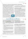 Funktions- und Verbundmaterialien verstehen und gestalten - Beispiele fächerverbindender Zusammenarbeit Preview 4