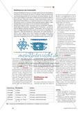 Schwefel und Kohlenstoff - Stoffeigenschaften über Strukturen deuten Preview 3