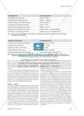 Formeln, Tabellen und Diagramme - Einsatz verschiedener mathematischer Darstellungsformen im Physikunterricht Preview 6