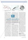 Radiowellen, Reisbrei und Radar - Technische Kontexte, bei denen elektromagnetischen Wellen Energie und Information transportieren Preview 3
