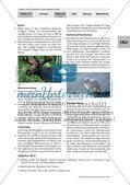 Die Tier- und Pflanzenwelt in der Arktis und Antarktis Preview 4