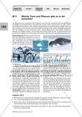 Die Tier- und Pflanzenwelt in der Arktis und Antarktis Preview 5