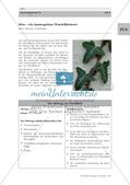 Efeu: Merkmale, Funktion und Bedeutung Preview 1