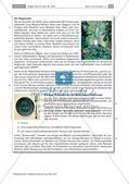 Fleischkonsum: Ökologische und ethische Aspekte Preview 4