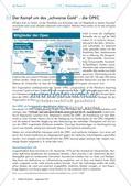 Von IWF bis WTO: internationale Wirtschaftsorganisationen im Fokus Preview 10