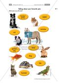Reading, Writing and Speaking: Pets Preview 3