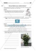 Untersuchen von Kletterpflanzen Preview 18
