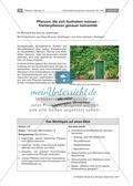 Untersuchen von Kletterpflanzen Preview 1