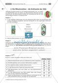 Zellen und Zellorganellen: Stationenarbeit Preview 4