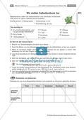 Heilpflanzen: Herstellen von Hustenbonbons Preview 2