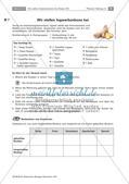 Heilpflanzen: Herstellen von Hustenbonbons Preview 3