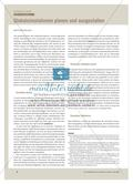 Globalsimulationen planen und ausgestalten Preview 1