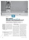 Wie wirken Steuern und Subventionen? - Beiträge des Staates zur Preiskalkulation von Unternehmen Preview 1