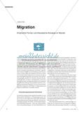 Migration - Empirische Formen und theoretische Konzepte im Wandel Preview 1