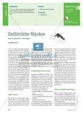 Gefährliche Mücken - Eine kooperative Filmanalyse Preview 1