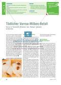 "Tödlicher Varroa-Milben-Befall - Varrose im Themenfeld ""Wirbellose"" oder ""Ökologie"" behandeln Preview 1"