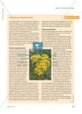 Schadstofftester im Kleinformat - Honigbienen als Bioindikatoren Preview 2