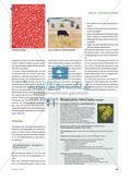 Schadstofftester im Kleinformat - Honigbienen als Bioindikatoren Preview 4