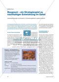 Bougouni – ein Strategiespiel zu nachhaltiger Entwicklung im Sahel: Lebensbedingungen und Dynamik in Entwicklungsländern spielend erfahren Preview 1
