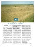 Russische Kornkammer trotz Landflucht? - Herausforderungen für Agrarsteppen in Sibirien Preview 2