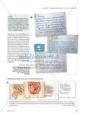 Emotional und körperlich verändert - Die Entwicklung der Körpermerkmale besprechen Preview 4