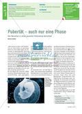 Pubertät – auch nur eine Phase: Den Menschen in seiner gesamten Entwicklung betrachten Preview 1