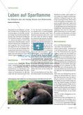Leben auf Sparflamme - Ein Überblick über das heutige Wissen zum Winterschlaf Preview 1