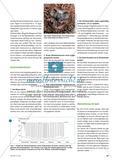 Leben auf Sparflamme - Ein Überblick über das heutige Wissen zum Winterschlaf Preview 2