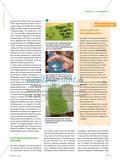 Experten in die Schule holen - Eine Vivarium-AG einführe Preview 2
