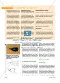 Experten in die Schule holen - Eine Vivarium-AG einführe Preview 3