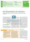 Die Domestikation der Haustiere - Differenzierung nach oben: In Klasse 5 Grundlagen legen für Genetik und Evolution Preview 1
