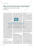 Wie die Umwelt Gene beeinflusst - Die Epigenetik revolutioniert nicht nur die Biologie Preview 1