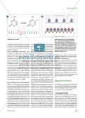 Wie die Umwelt Gene beeinflusst - Die Epigenetik revolutioniert nicht nur die Biologie Preview 2