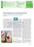 Nahrungsnetz und Spinnennetz - Naturerfahrungsspiele für ein ganzheitliches Naturverständnis Preview 1