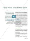 Flower Power – was Pflanzen leisten Preview 1