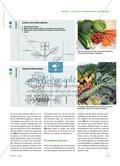 Welche Pflanzenteile essen wir? - Obst und Gemüse untersuchen Preview 2